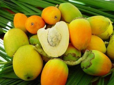 из какого фрукта миндаль