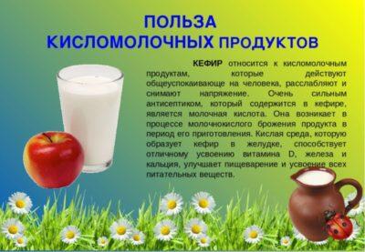 что относится к кисломолочным продуктам