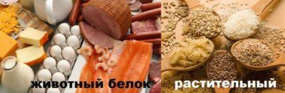 что относится к бобовым продуктам