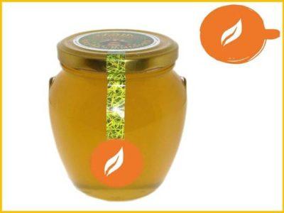 какой мед самый ценный и полезный
