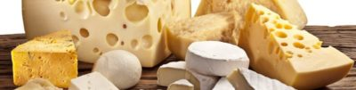 из какого молока делают сыр