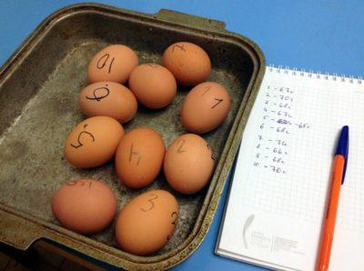 как запечь яйца в духовке