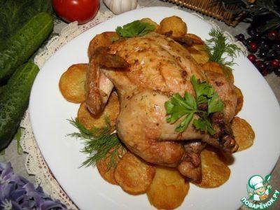 как приготовить цыпленка корнишона в духовке